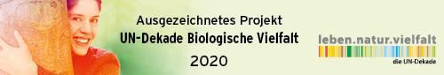 191019_028_un-dekade_logo_ausgezeichnetes_projekt-2020_500x85px